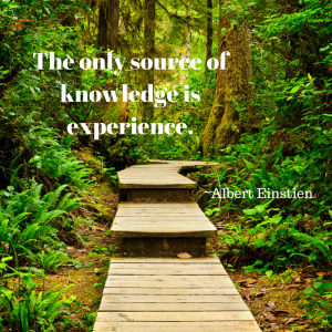 the-only-source-of-knowledge-is-experience